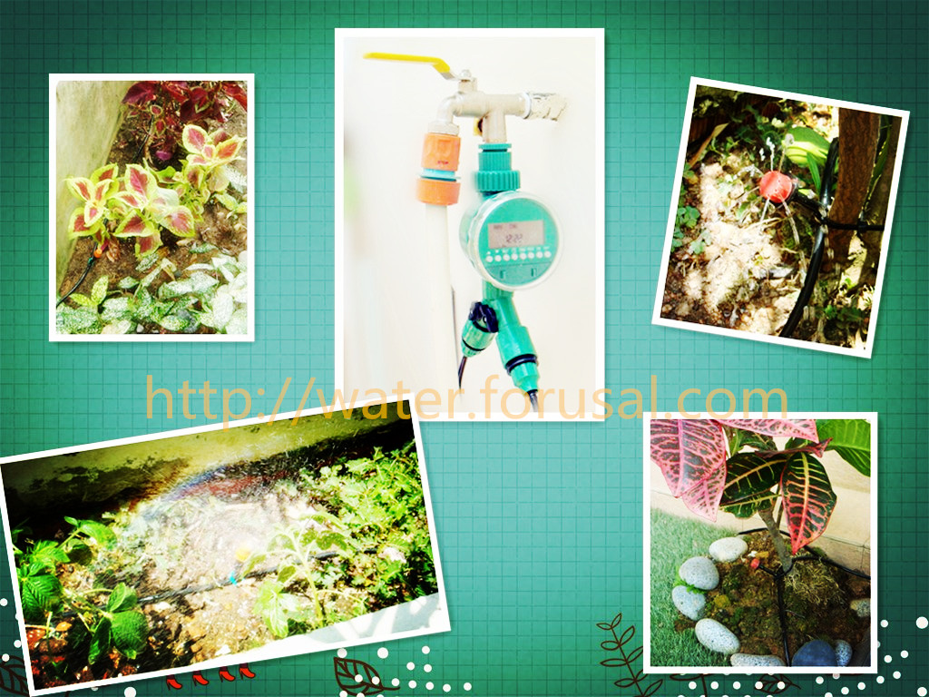automatic plant watering system installed in Singapore